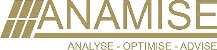Anamise Logo